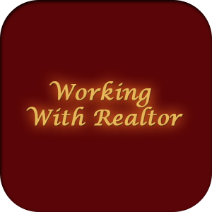 Working with Realtor
