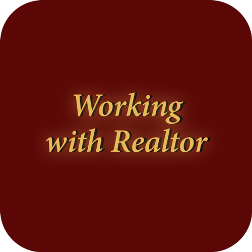 Working with Realtor icon